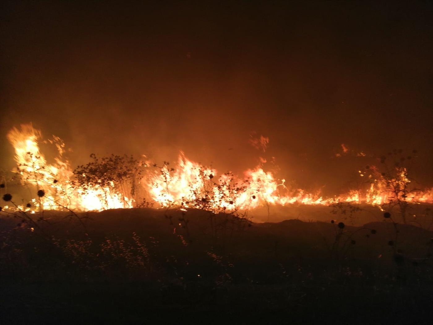 """השריפה בבקעת הירדן (כב""""ה יו""""ש)"""