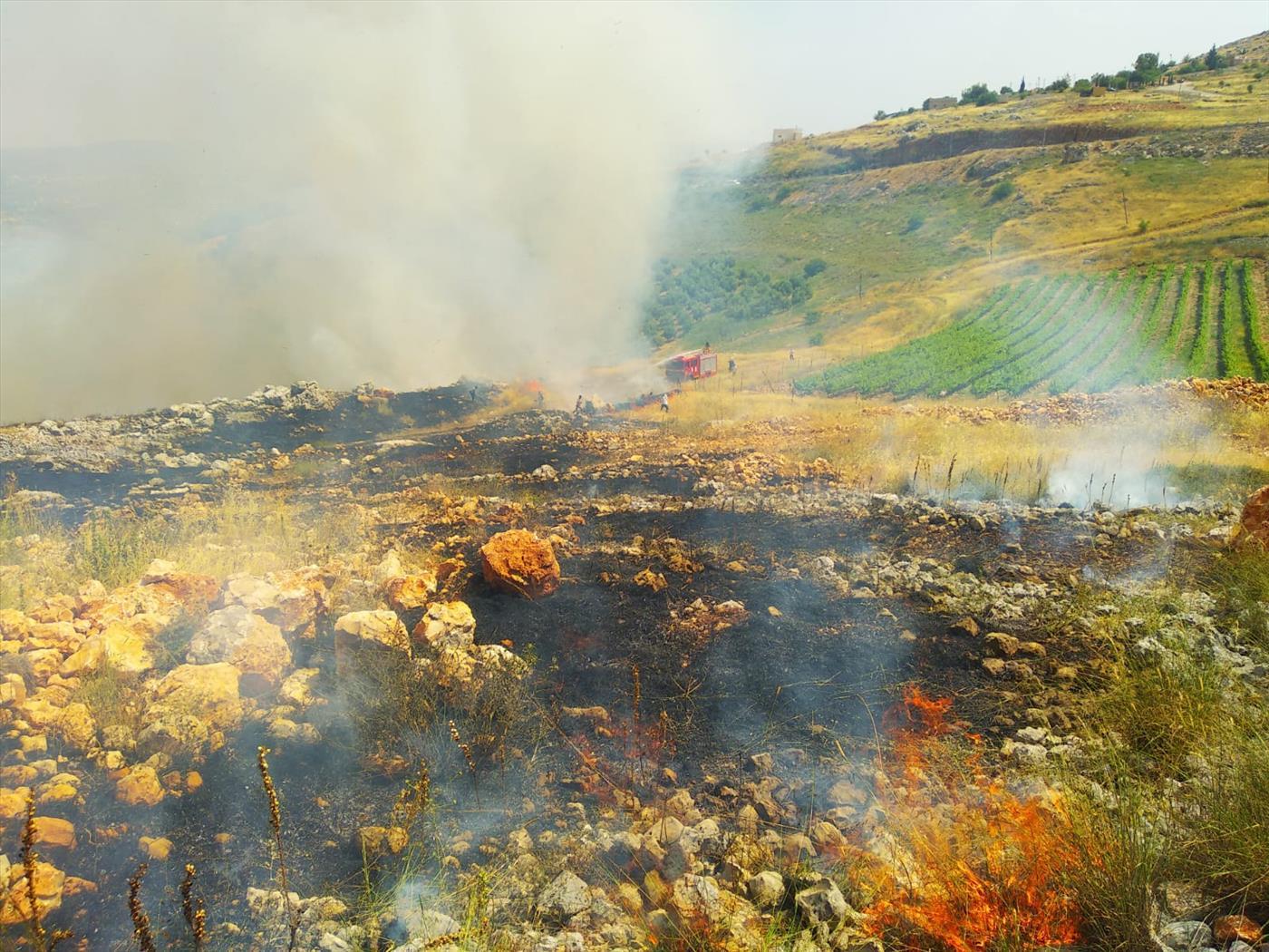 השריפה בהר ברכה בשומרון (יעקב גואלמן, tps)