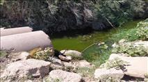 הגנת הסביבה - לא בנחל אלכסנדר