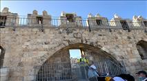 פורצי השערים ומטהרי הטומאות