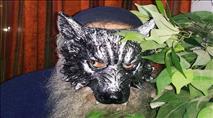 The Masked Marvel