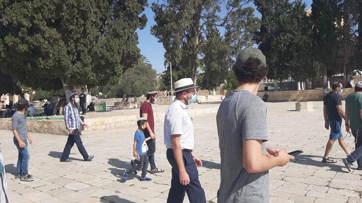 יהודים בהר הבית בתשעה באב (יעקב בן משה/TPS)