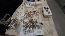 נתפסו 'על חם' ערבים שגנבו תכשיטים בירושלים