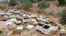 לקראת החג מוסלמי: עלייה במספר גניבות דבש מדבוראים
