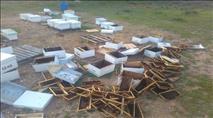 תנועת רגבים: מיגור הפשיעה החקלאית עובר בבתי המשפט
