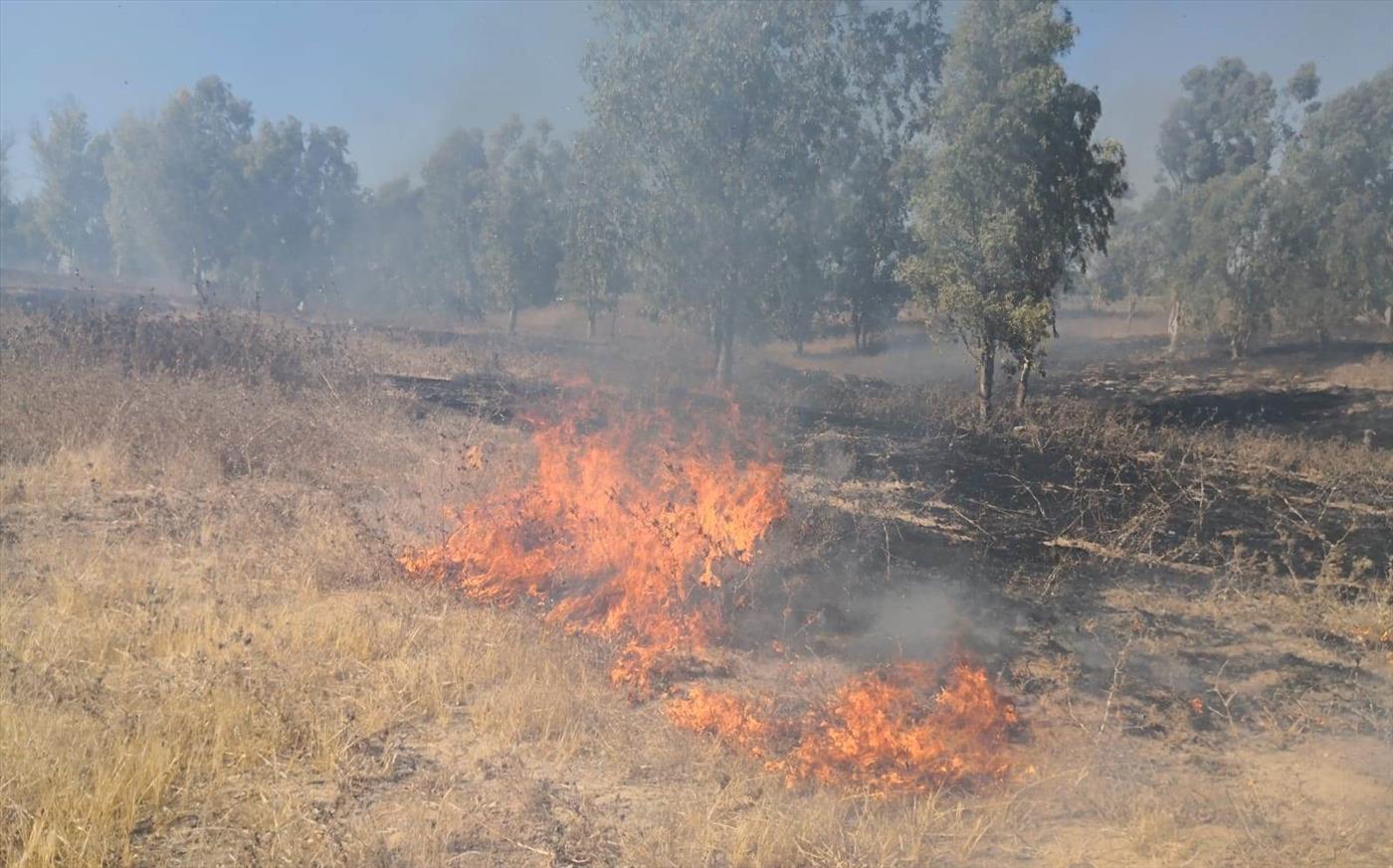 שריפה מבלוני תבערה סמוך לבאר מרווה (tps)