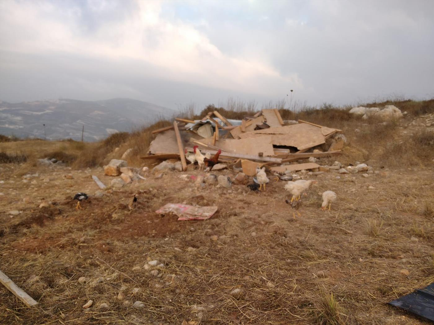 הרס בגבעת שבח הארץ ביצהר (באדיבות המצלם)