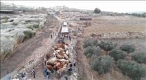ערבים חשודים בפלישה לשטחי מרעה – עשרות פרות הוחרמו