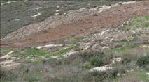 בחסות המצור: ערבים משתלטים על קרקעות קומי אורי