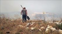 קומי אורי: מטע של תושבים ניזוק משריפה שהציתו ערבים