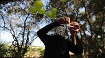 תושבים בעוטף: 'חמאס שבו לשגר בלוני תבערה'