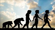 הניצוץ הקדוש של האבולוציה