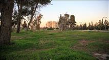 לינץ' חמור בירושלים: התוקפים שוחררו תוך שעות ספורות