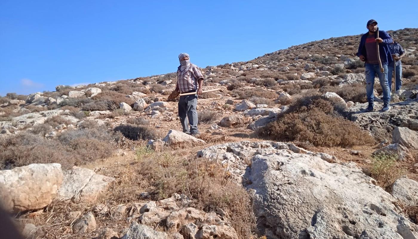 רועי צאן יהודים הותקפו בבנימין