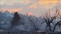 ההצתה בהרי ירושלים: כ-17 אלף דונם נשרפו