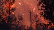 צפו: השריפה הגדולה שהחלה במספר מוקדי הצתה