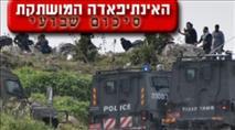 סיכום שבועי: 30 אירועי טרור ו-5 פצועים