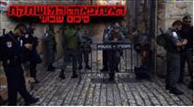 סיכום שבועי: 48 אירועי טרור ו-9 פצועים