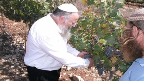נבואות מתגשמות במדינת ישראל