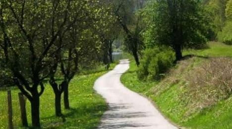 מפת הדרכים למקדש • מאמר לשבת