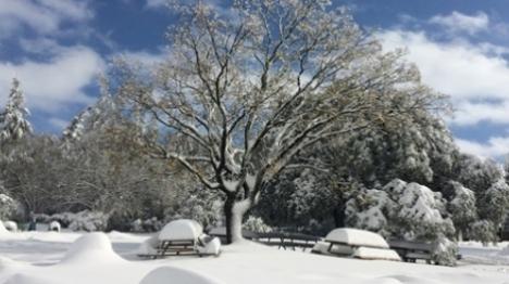 הקור חוזר ובגדול: שלג מחר בירושלים