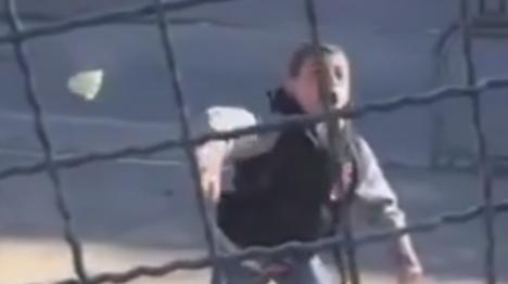 צפו: כך מותקפים מאבטחי עיר דוד