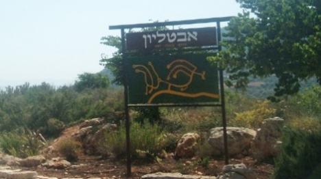 ערבי ניסה לחטוף יהודים בגליל