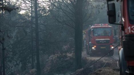 שוב: שריפה השתוללה ביער גבעות