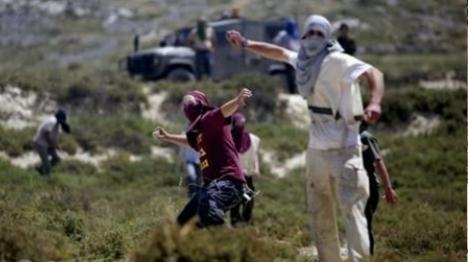 לאחר הפיגוע: ערבי הוכה בבנימין