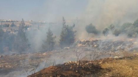 פיגוע הצתה בהר חברון: עשרות נפגעו