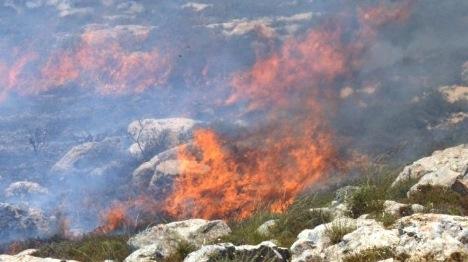 """ערבים הציתו שריפה: """"המנהל אזרחי אשם בנזק"""""""