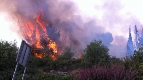 שריפה שהוצתה סמוך לבתים בירושלים (מני כהן)