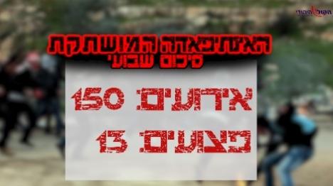 13 יהודים נפצעו ב-150 אירועי טרור