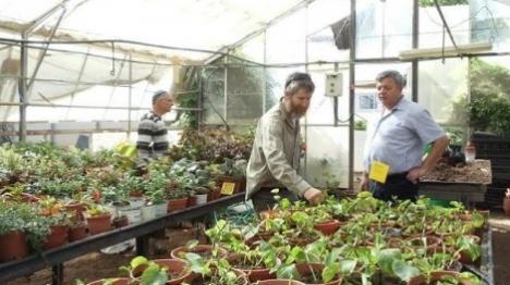 שש חוות חקלאיות חדשות ללימודי 'השמיטה'