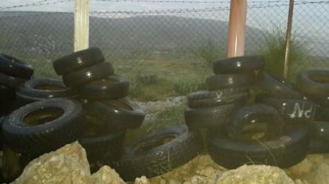 הר חברון: 60 ראשי צאן נגנבו
