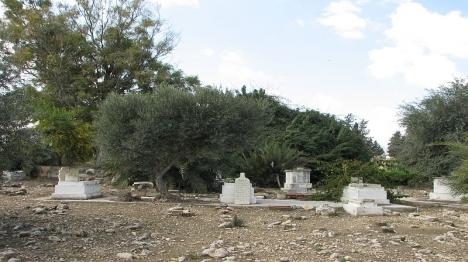 """ח""""כים ערבים הניחו זר בקבר טרוריסט"""