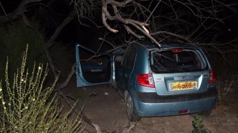 צפו: ערבי גנב רכב, נמלט בפראות והתנגש בעץ