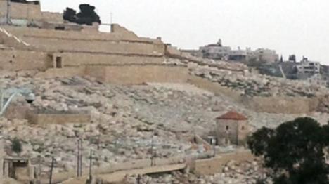 שדולה למען ׳הר הזיתים׳