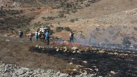 שומרון: ערבים הציתו שרפה