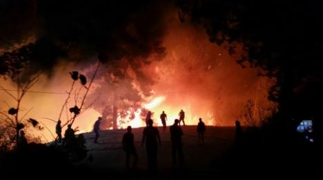השריפה סמוך לדולב, אמש (הלל מאיר, tps)