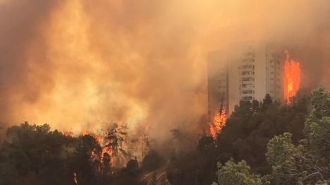 שריפה בחיפה (אור יוגב)