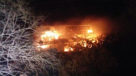 כעת לכולם ברור: ערבים הציתו שריפות רבות