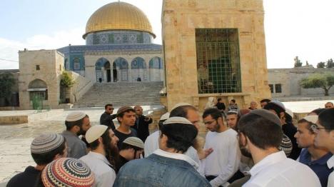 יהודים בהר הבית בטהרה (המטה המשותף) צילום: המטה המשותף