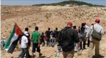 ערבים עקרו עשרות עצים בגוש עציון