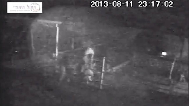 בלעדי: מצלמות האבטחה תיעדו גניבת צאן מחוות מעון