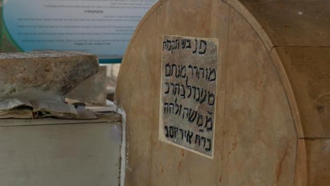 צפו: הרבי של ארץ ישראל
