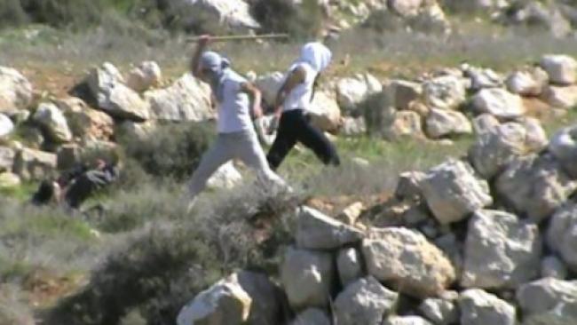 תיעוד: יהודים מכים אנרכיסט שליווה רועים ערבים בהר חברון